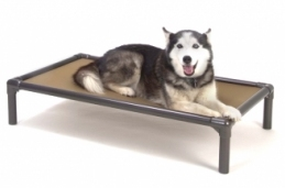 animals/Kuranda Bed.jpg